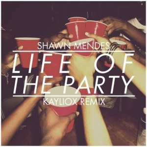 Shawn Mendes — Life Of The Party (Kayliox Remix)